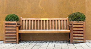 Wooden bench with bush. In front of marble wall Stock Photos