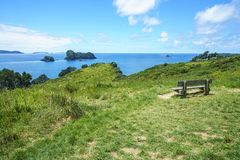 Wooden bench at cathedral cove,coromandel peninsula, new zealand. Wooden bench in lush green grass at cathedral cove,coromandel peninsula, new zealand Royalty Free Stock Image