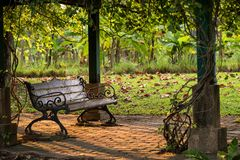 wooden bench chair in park at sunset stock photo