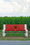 Wooden bench in corn field Royalty Free Stock Photo