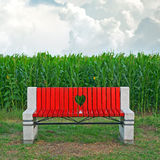 Wooden bench in corn field Stock Photography
