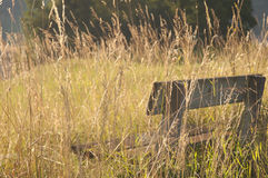 A wooden bench in the countryside Stock Images