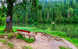 Wooden bench at the edge of a mountain lake. Sample Stock Photos