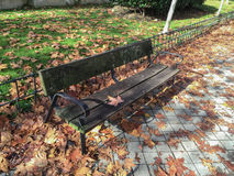 Wooden bench in fall. Wooden bench surrounded by leaves in fall Royalty Free Stock Photo