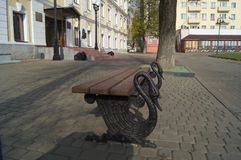 Wooden bench with feet of black swans. In the historic part of the city. Standing on the cobblestones. Located near the entrance to the museum. Swans gracefully Royalty Free Stock Photography