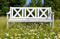 Wooden bench in flowery meadow Royalty Free Stock Photography
