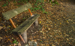 Wooden bench in the forest Royalty Free Stock Photos