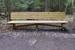 Wooden Bench in Forest Royalty Free Stock Photo