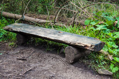 Wooden bench in a forest Royalty Free Stock Photos