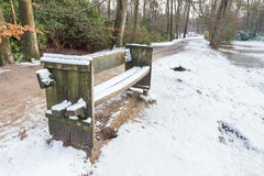 Wooden bench in forest with snow Royalty Free Stock Images
