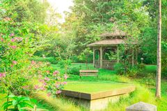 Wooden bench on fresh green carpet grass yard, smooth lawn beside a brown gazebo under flower blooming trees in beautiful garden royalty free stock photography