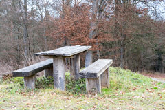 Wooden Bench in fron of a forrest in Winter Stock Photography