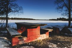 Wooden bench in front of a frozen lake with birch pine trees around while branches hanging from the blue sky stock image
