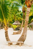 Wooden bench in front of two palms on the white coral sand beach Stock Images
