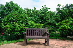 Wooden bench. In the garden Royalty Free Stock Photo