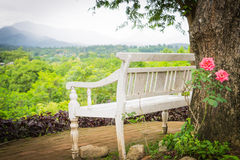 Wooden Bench in the garden Royalty Free Stock Images