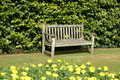 Wooden bench in a garden Royalty Free Stock Photography