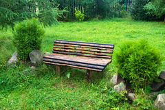 Wooden bench in the green park Stock Photo