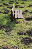 Wooden bench and many molehills in spring. A wooden bench and many molehills in the grass in the park in the beautiful spring stock photos