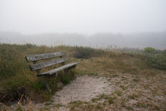 Wooden bench in misty forest Royalty Free Stock Photos