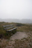 Wooden bench in misty forest Stock Photography