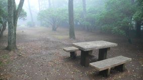 Wooden bench in misty park Stock Image