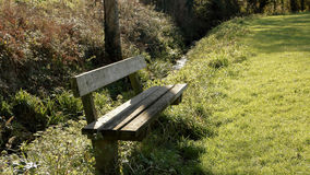 Wooden bench in nature Stock Photos