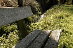 Wooden bench in nature Stock Images