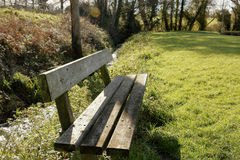 Wooden bench in nature Royalty Free Stock Photography
