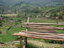 Wooden bench near fields. Wooden bench near the vegetable fields in India Royalty Free Stock Photos