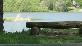 Wooden bench near the lake stock video