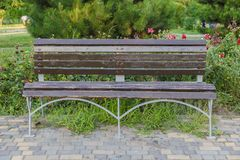 A wooden bench offers a place to sit in a suburban park. stock photos
