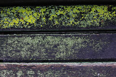 Wooden bench overgrown with moss Stock Photo