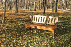 Wooden bench in park. Wooden bench in autumn park green ivy ground stock photos