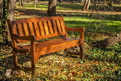 Wooden bench in park. Wooden varnished brown bench in autumn park ground stock images
