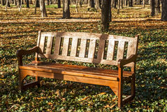 Wooden bench in park. Wooden varnished brown bench in autumn park ground stock photos