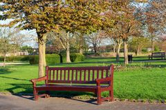 Wooden bench at a park Royalty Free Stock Images