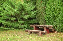 Wooden bench in the park Royalty Free Stock Photos