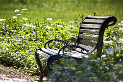 Wooden bench in a park Stock Photography