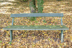 A Wooden Bench at a Park in Autumn, Germany Royalty Free Stock Images