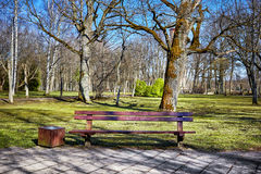 Wooden bench in a park Royalty Free Stock Photos