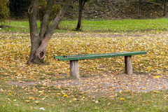 Wooden bench in the park Royalty Free Stock Image