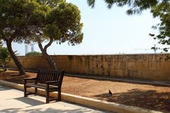 Wooden bench in park, malta, valetta,. With trees in background and stone wall Royalty Free Stock Photography