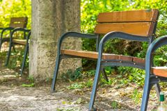Wooden bench in the park. Rest area Stock Photos