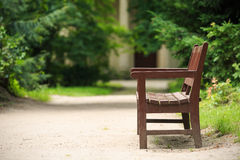 Wooden bench in the park in summer Royalty Free Stock Photos