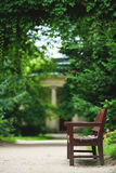 Wooden bench in the park in summer Royalty Free Stock Photography