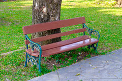 Wooden bench in the park under the tree. Stock Photography