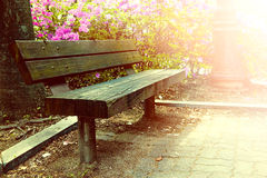 Wooden bench in park. Stock Photo
