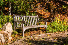 Wooden Bench on Path With Fallen Leaves in Autumn Stock Images