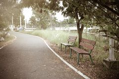 Wooden bench and a path in the park Stock Photography
